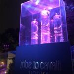 Just Cavalli 01