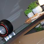 Molteni e Pirelli 01