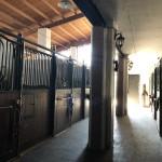 La Mimosa Polo Club 03